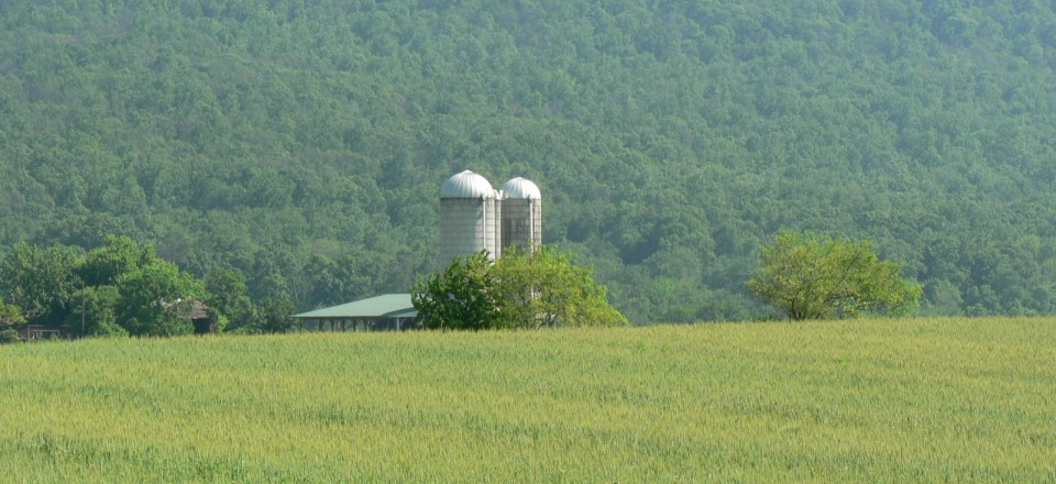 Middlesex Farm