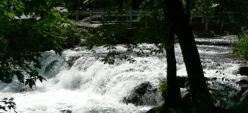 LeTort Falls Park